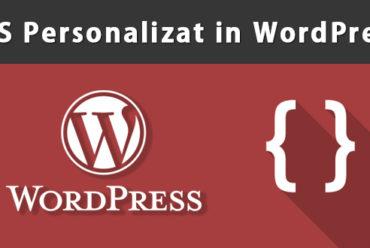 Plugin pentru crearea regulilor CSS personalizate in WordPress