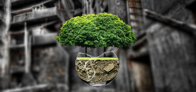 montaj-foto-tree-in-jar-efect-final