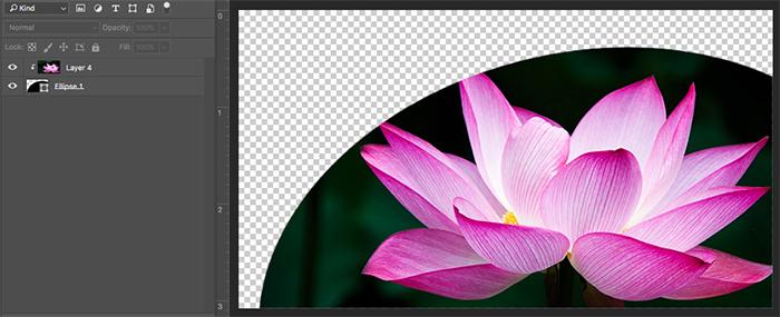 Curs Photoshop - Efecte imagini