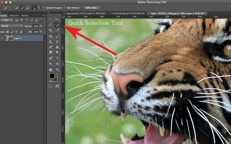 1.quick-selection-tool-photoshop