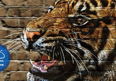 Efect pictura pe zid cu Photoshop