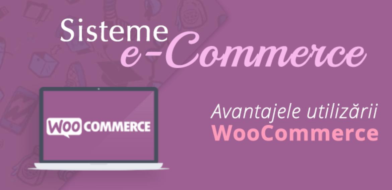 Avantajele utilizarii WooCommerce
