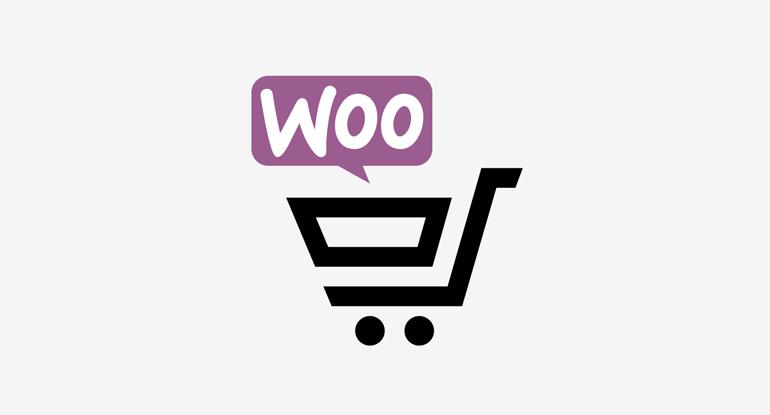 Curs eCommerce Online