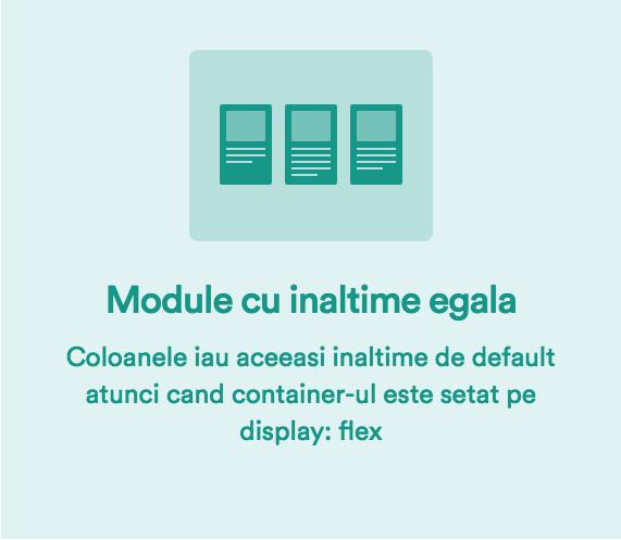 FlexBox CSS3 - elemente cu inaltime egala