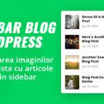 Curs WordPress online - plugin pentru imagini lista articole sidebar